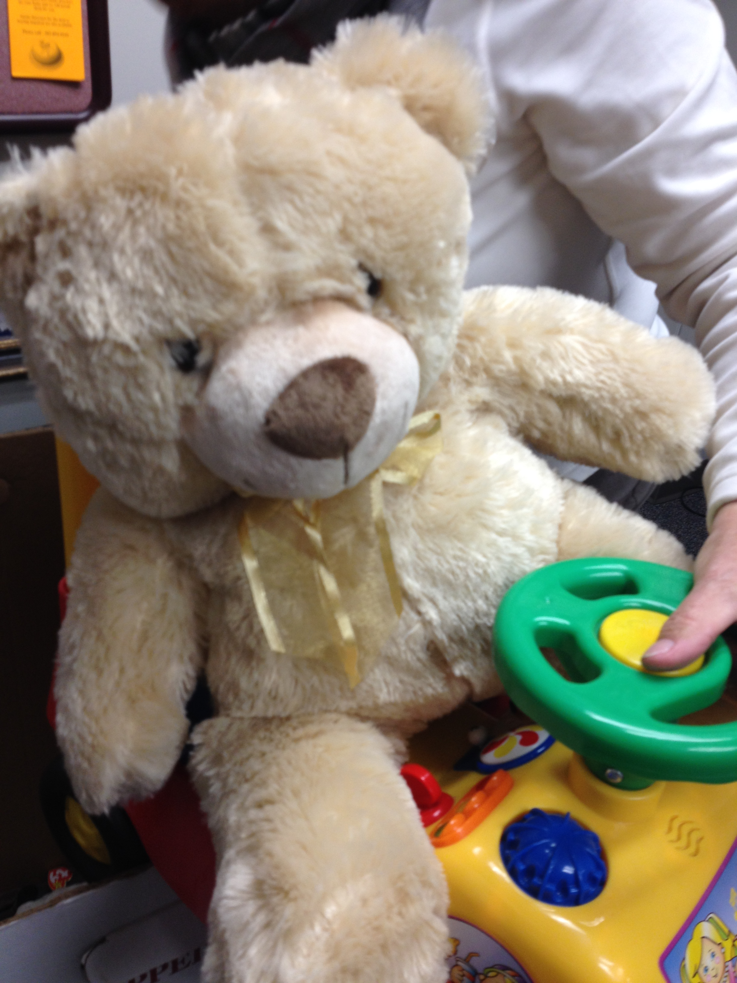 Toys For Tots Marine Bear : Toys stolen from norwalk city hall charity drive nancy