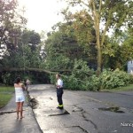 A tree knocked down by Saturday afternoon''s storm pulled down wires and blocked Soundview Avenue.
