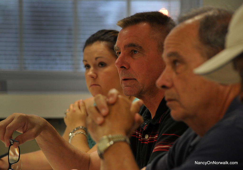 Council Ordinance Committee  004-2014-07-15