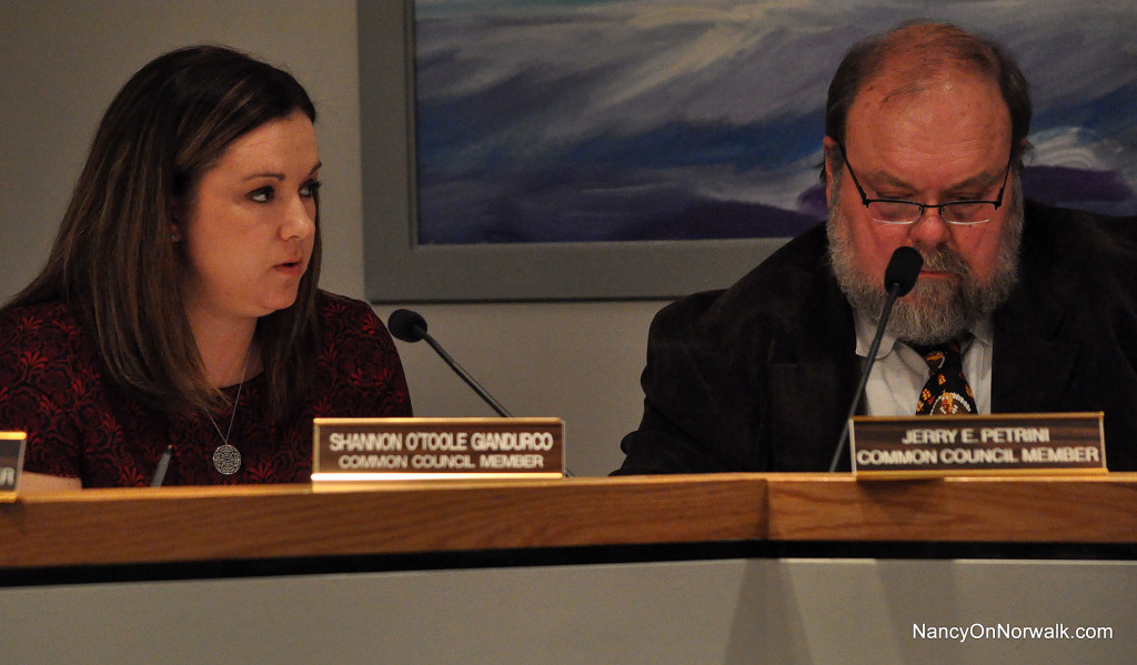 Ordinance Committee Chairwoman Shannon O'Toole Giandurco (R-District D), left, introduces an ordinance to join the