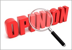Opinion search