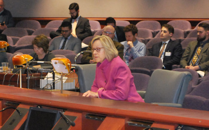 State Rep Terrie Wood (R-141) testifies